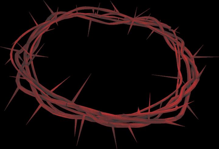 Jesus persönlich kennenlernen